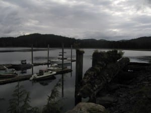 The harbor in Whale Pass (Photo from the Alaska Department of Commerce, Community and Economic Development; Division of Community and Regional Affairs' Community Photo Library)