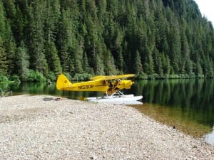 This super cub at Eliza Lake allows biologists to track pink escapements. Photo courtesy of Troy Thynes