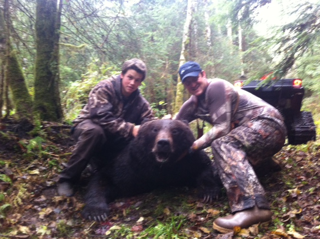Brown bear shot in black bear territory