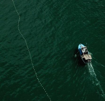 Mandatory vessel safety checks postponed