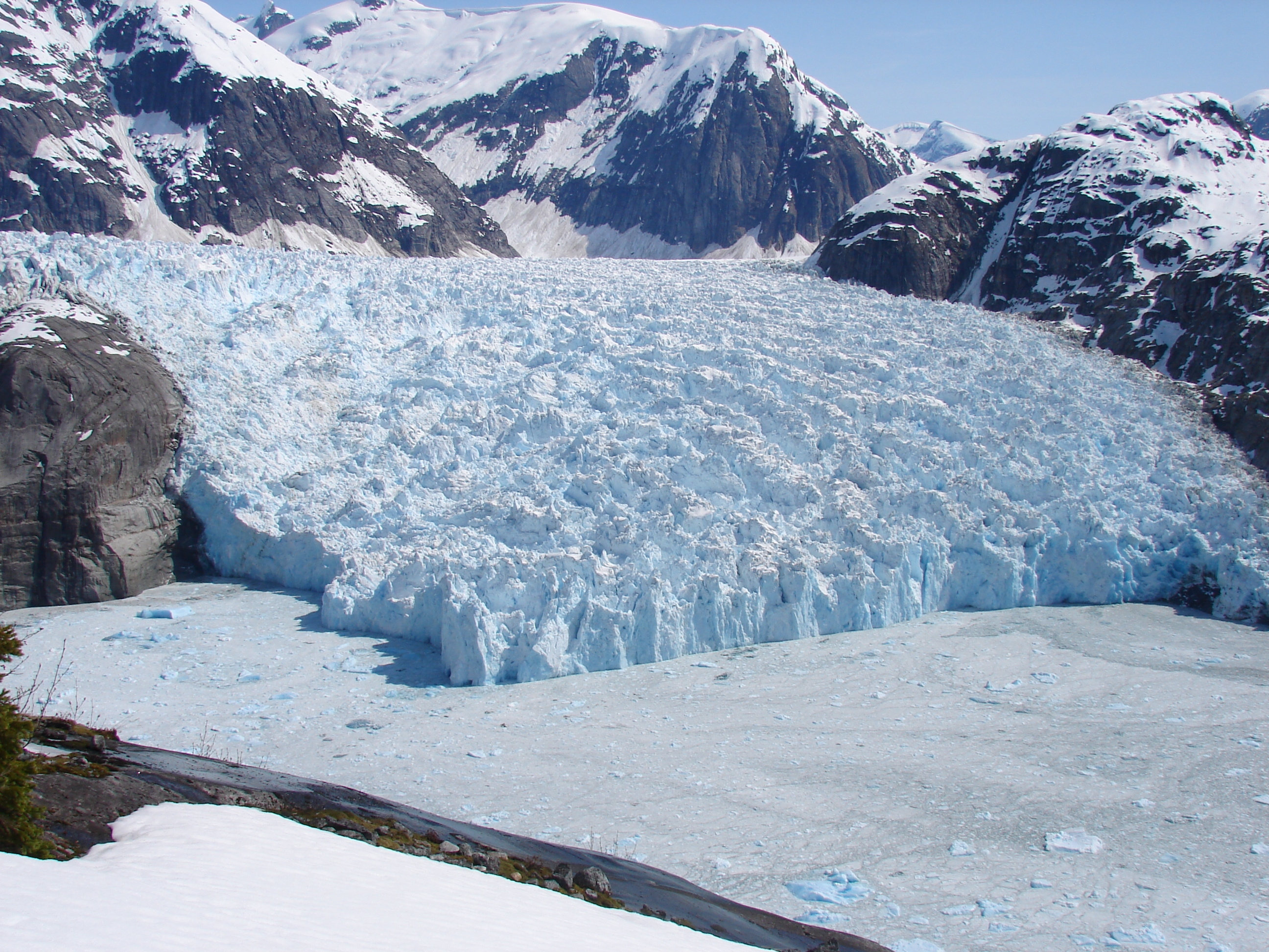 Glacier terminus shows little movement while icefield thins overall