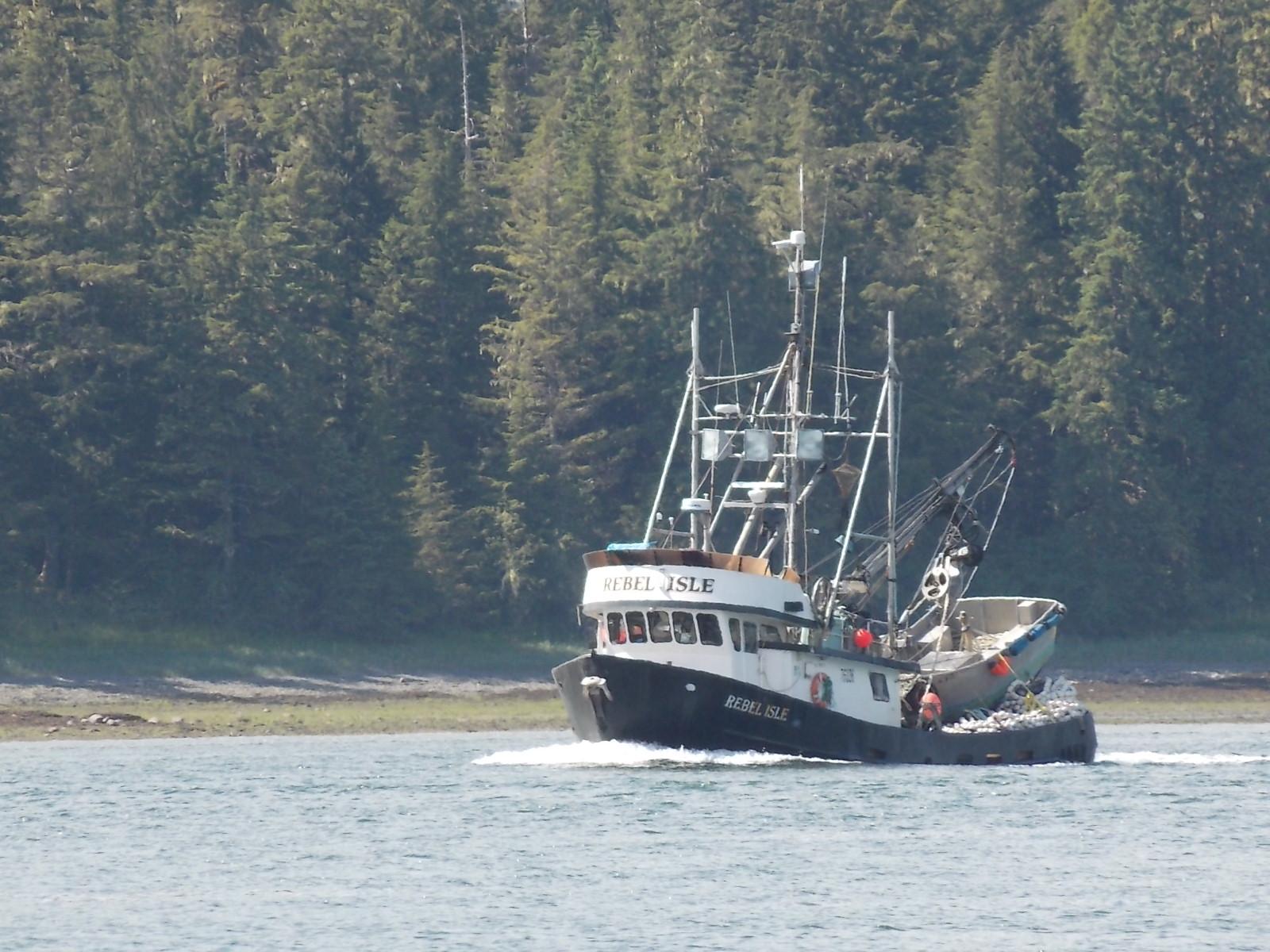 Big inventory of Alaska pink salmon presents marketing challenge