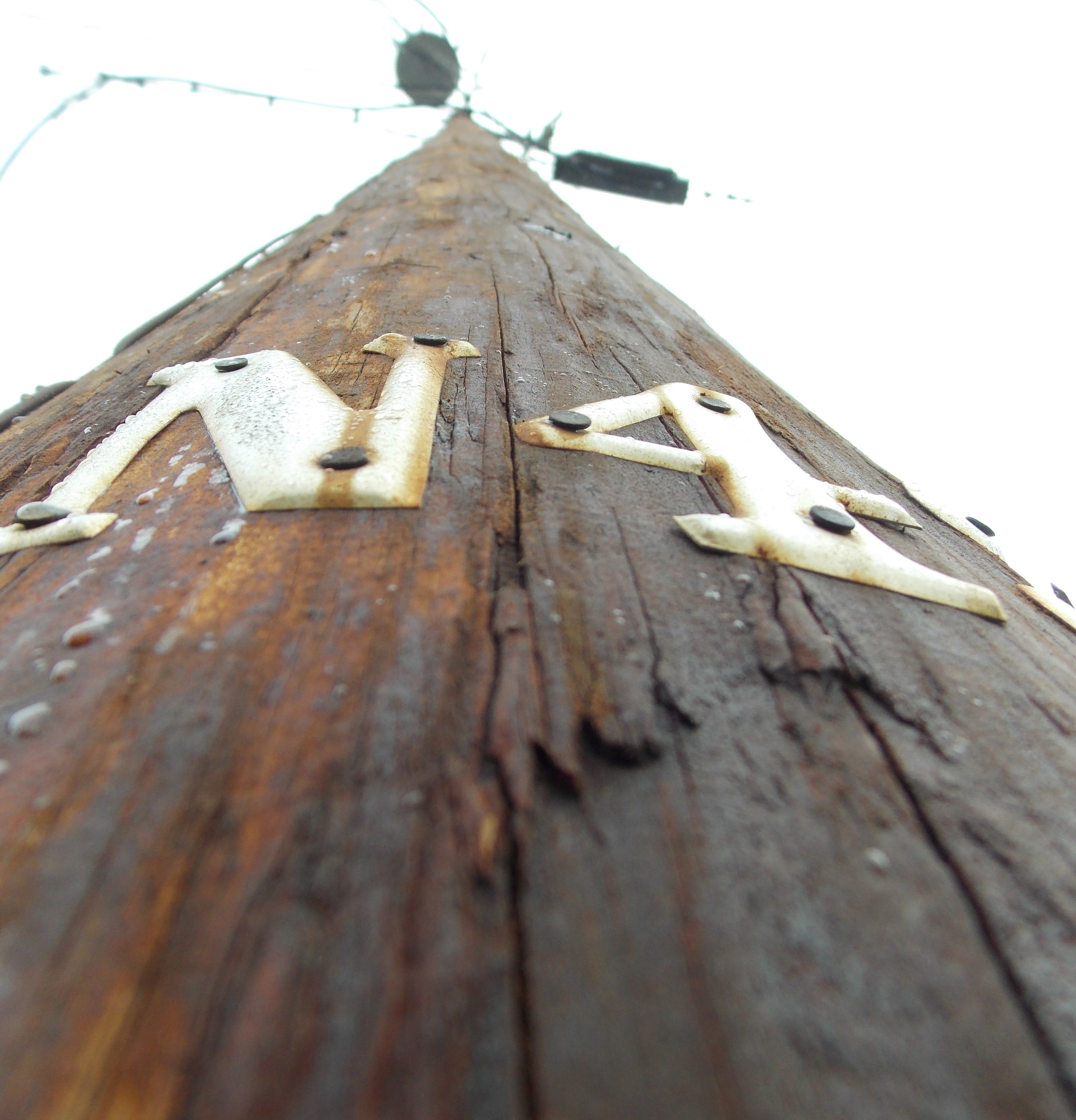 Petersburg to consider electric rate hikes