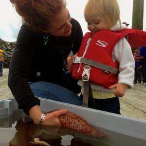 Erin Kandoll shows her 1-year-old niece Zoe Watkins a sea cucumber. Photo/Angela Denning