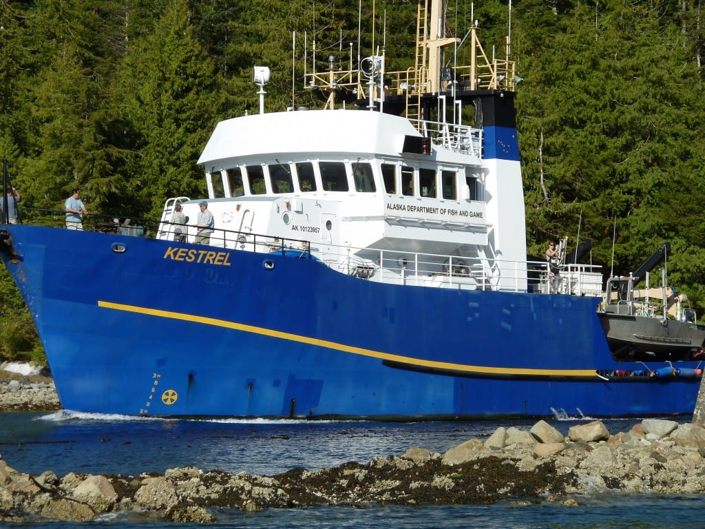 Alaska budget cuts lead to less fishing opportunity - KFSK