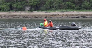 NOAA-led responders attached a green satellite buoy to the entangled humpback when it was swimming in Gastineau Channel on June 4. The green buoy has now become disconnected from the whale, and marine mammal stranding network members are no longer able to track the whale's location. (Photo courtesy of NOAA Fisheries)