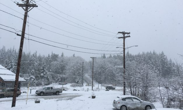 KPU Electric continues diesel generation as snow continues to fall