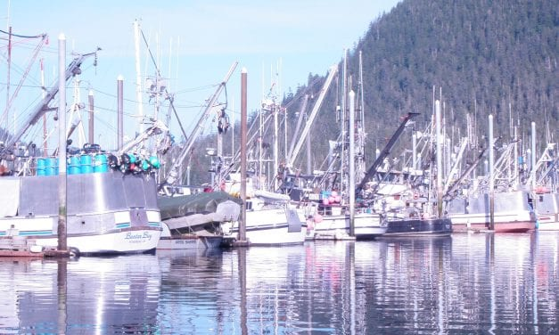 Electronic monitoring available for smaller fishing boats