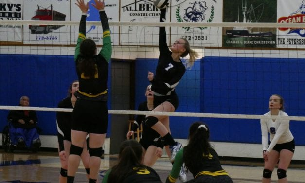 Vikings will volleyball region title, bound for state along with Wrangell Wolves