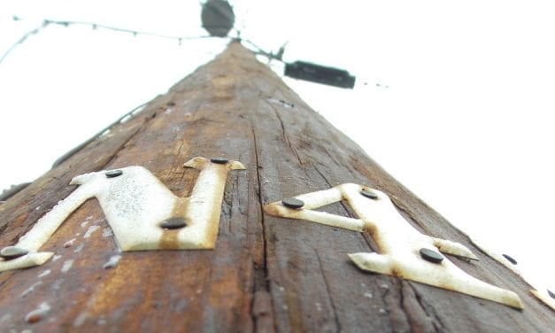 Petersburg electric department reorganization back on track