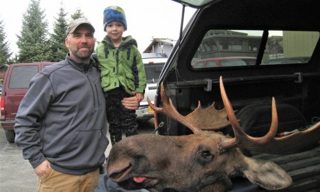 105 bull moose killed in central Southeast Alaska hunt