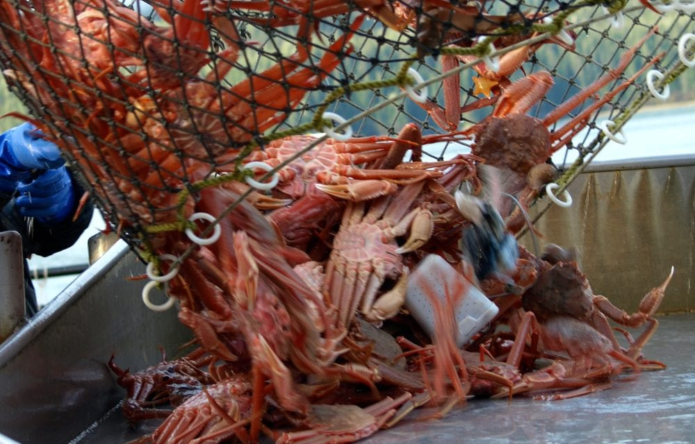 Commercial crabbing wraps up in some parts of SE AK