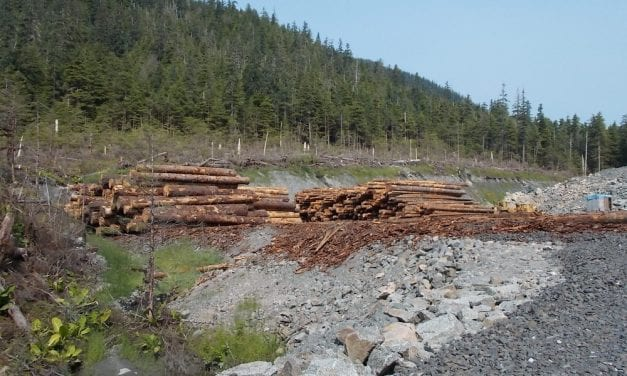 Groups ask USFS to wait on logging project near Petersburg, Wrangell